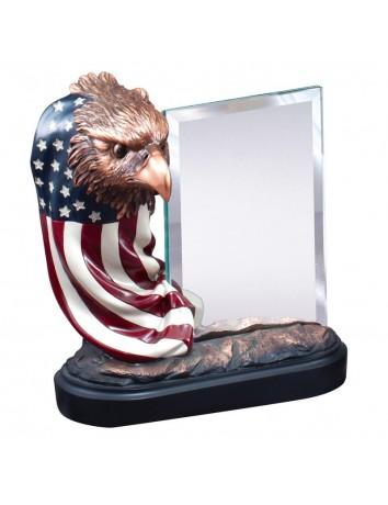 Eagle Head on Flag with Glass