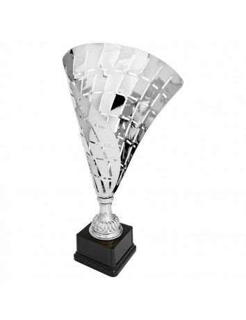 Completed Flag Trophy